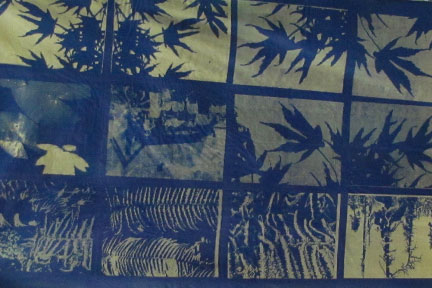 Cyanotype on Fabric